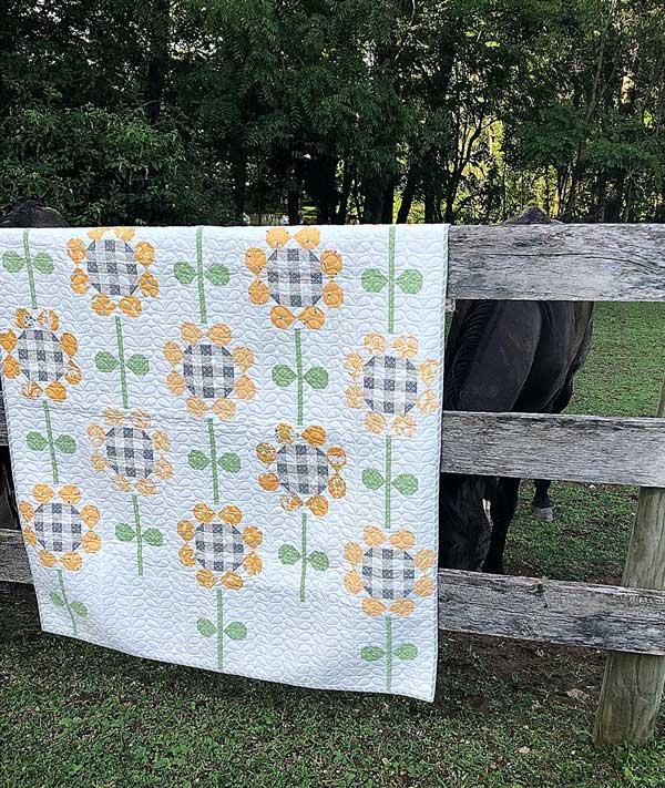 Spring Brook Quilt Kit =  Moda Fabrics KIT29110